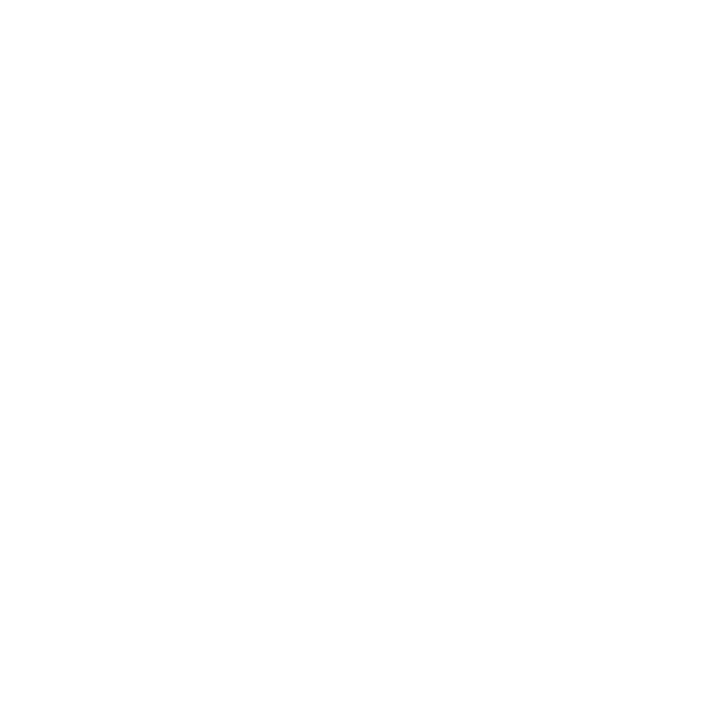 L.Storojuc
